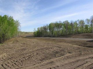Photo 11: 16 53214 RGE RD 13 Road: Rural Parkland County Rural Land/Vacant Lot for sale : MLS®# E4099594