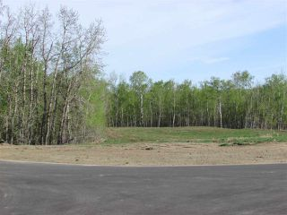 Photo 4: 16 53214 RGE RD 13 Road: Rural Parkland County Rural Land/Vacant Lot for sale : MLS®# E4099594