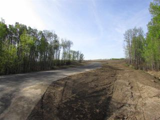 Photo 16: 16 53214 RGE RD 13 Road: Rural Parkland County Rural Land/Vacant Lot for sale : MLS®# E4099594