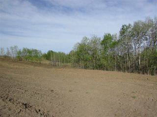 Photo 14: 16 53214 RGE RD 13 Road: Rural Parkland County Rural Land/Vacant Lot for sale : MLS®# E4099594