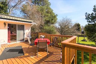 Photo 18: 1631 Richardson Street in VICTORIA: Vi Fairfield West Single Family Detached for sale (Victoria)  : MLS®# 388757