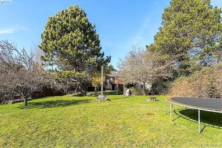 Photo 20: 1631 Richardson Street in VICTORIA: Vi Fairfield West Single Family Detached for sale (Victoria)  : MLS®# 388757