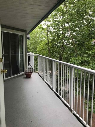 "Photo 13: 308 15120 108 Avenue in Surrey: Guildford Condo for sale in ""RIVERPOINTE"" (North Surrey)  : MLS®# R2282208"