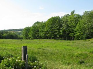 Photo 17: 2929 East River West Side Road in Glencoe: 108-Rural Pictou County Farm for sale (Northern Region)  : MLS®# 201818211