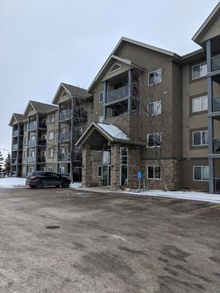 Main Photo: 334 279 SUDER GREENS Drive in Edmonton: Zone 58 Condo for sale : MLS®# E4138556