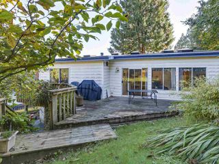 "Photo 17: 1018 PALMDALE Street in Coquitlam: Ranch Park House for sale in ""Ranch Park"" : MLS®# R2329948"