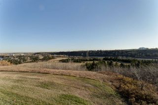 Photo 17: 245 1196 HYNDMAN Road in Edmonton: Zone 35 Condo for sale : MLS®# E4140003