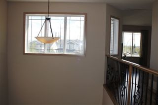 Photo 21: 2236 GARNETT Court in Edmonton: Zone 58 House for sale : MLS®# E4141606