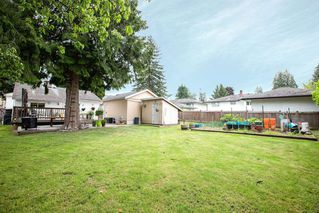 Photo 9: 10927 130A Street in Surrey: Whalley House for sale (North Surrey)  : MLS®# R2379935