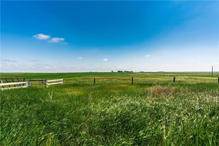 Photo 6: 336132 Hwy 547: Rural Foothills County Detached for sale : MLS®# C4255448