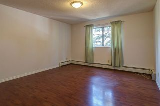 Photo 14: 213 1945 105 Street in Edmonton: Zone 16 Condo for sale : MLS®# E4167429
