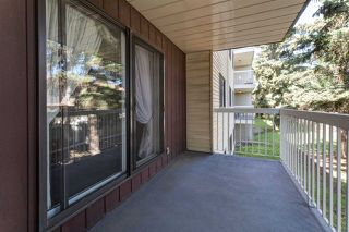 Photo 11: 213 1945 105 Street in Edmonton: Zone 16 Condo for sale : MLS®# E4167429
