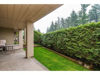 "Photo 20: 13 2058 WINFIELD Drive in Abbotsford: Abbotsford East Townhouse for sale in ""Rosehill"" : MLS®# R2413846"