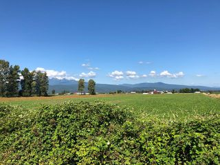 Photo 2: LOT 23 HALE Road in Pitt Meadows: North Meadows PI Land for sale : MLS®# R2432680