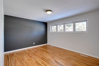 Photo 9: 8615 64 Avenue NW in Edmonton: Zone 17 House for sale : MLS®# E4192185