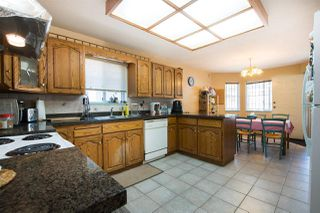 Photo 8: 4223 NAPIER Street in Burnaby: Willingdon Heights House for sale (Burnaby North)  : MLS®# R2481413