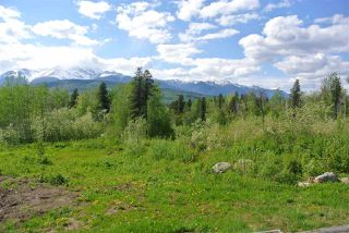 Photo 4: LOT 4 W 16 Highway in Smithers: Smithers - Rural Land for sale (Smithers And Area (Zone 54))  : MLS®# R2481789