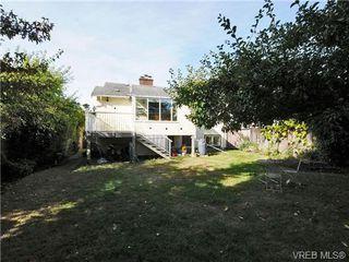 Photo 20: 2557 Vancouver St in VICTORIA: Vi Hillside House for sale (Victoria)  : MLS®# 684317