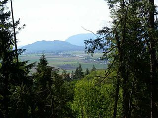 Main Photo: 7500 PATTERSON Road in Chilliwack: Eastern Hillsides Land for sale : MLS®# H1404594