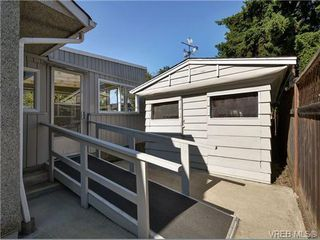Photo 16: 2636 Victor St in VICTORIA: Vi Oaklands House for sale (Victoria)  : MLS®# 702369