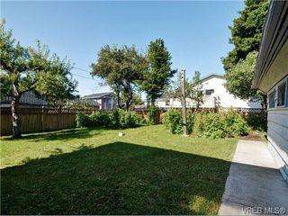 Photo 14: 2636 Victor St in VICTORIA: Vi Oaklands House for sale (Victoria)  : MLS®# 702369