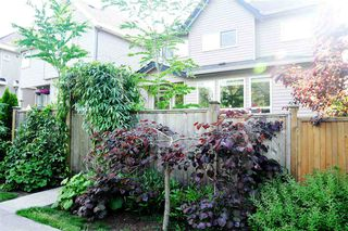 Photo 18: 7814 211B Street in Langley: Willoughby Heights House for sale : MLS®# R2072321