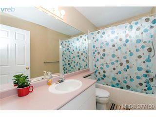 Photo 7: 13 3255 Rutledge Street in VICTORIA: SE Quadra Townhouse for sale (Saanich East)  : MLS®# 377150