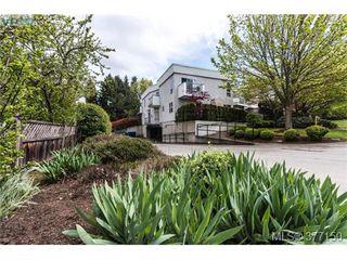 Photo 18: 13 3255 Rutledge Street in VICTORIA: SE Quadra Townhouse for sale (Saanich East)  : MLS®# 377150