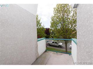 Photo 17: 13 3255 Rutledge Street in VICTORIA: SE Quadra Townhouse for sale (Saanich East)  : MLS®# 377150