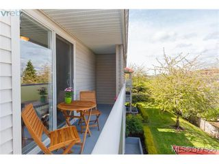 Photo 17: 305 3180 Albina Street in VICTORIA: SW Tillicum Condo Apartment for sale (Saanich West)  : MLS®# 377366
