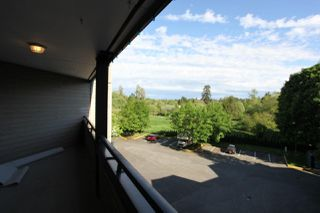 "Photo 17: 303 5224 204 Street in Langley: Langley City Condo for sale in ""South Wynde Court"" : MLS®# R2168465"