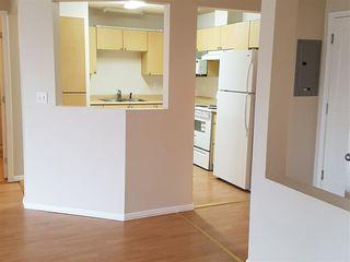 Photo 6: 310 10186 155 STREET in Surrey: Guildford Condo for sale (North Surrey)  : MLS®# R2161654