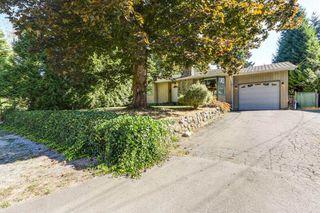 Photo 1: 12060 208 Street in Maple Ridge: Northwest Maple Ridge House for sale : MLS®# R2207261