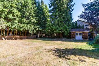 Photo 20: 12060 208 Street in Maple Ridge: Northwest Maple Ridge House for sale : MLS®# R2207261