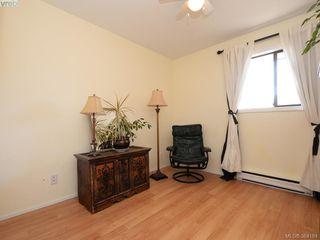 Photo 13: 203 1215 Bay Street in VICTORIA: Vi Fernwood Condo Apartment for sale (Victoria)  : MLS®# 384184
