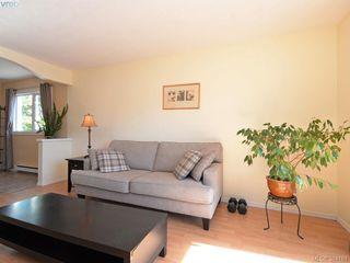 Photo 5: 203 1215 Bay Street in VICTORIA: Vi Fernwood Condo Apartment for sale (Victoria)  : MLS®# 384184