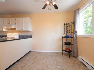Photo 6: 203 1215 Bay Street in VICTORIA: Vi Fernwood Condo Apartment for sale (Victoria)  : MLS®# 384184