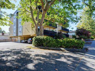 Photo 19: 203 1215 Bay Street in VICTORIA: Vi Fernwood Condo Apartment for sale (Victoria)  : MLS®# 384184