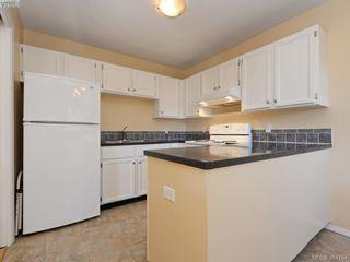 Photo 9: 203 1215 Bay Street in VICTORIA: Vi Fernwood Condo Apartment for sale (Victoria)  : MLS®# 384184