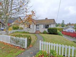 Photo 16: 3761 Saanich Rd in VICTORIA: SE Swan Lake Single Family Detached for sale (Saanich East)  : MLS®# 773193