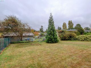 Photo 20: 3761 Saanich Rd in VICTORIA: SE Swan Lake Single Family Detached for sale (Saanich East)  : MLS®# 773193