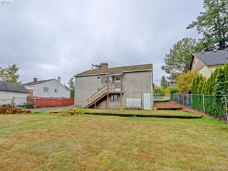 Photo 19: 3761 Saanich Rd in VICTORIA: SE Swan Lake Single Family Detached for sale (Saanich East)  : MLS®# 773193