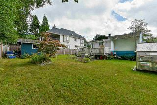 Photo 14: 13643 HOWEY Road in Surrey: Bolivar Heights House for sale (North Surrey)  : MLS®# R2287713