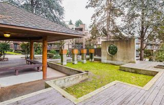 """Photo 17: 514 9867 MANCHESTER Drive in Burnaby: Cariboo Condo for sale in """"BARCLAY WOODS"""" (Burnaby North)  : MLS®# R2315579"""