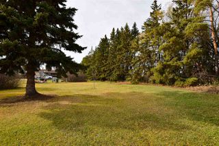 Photo 19: 55129 RGE RD 245: Rural Sturgeon County House for sale : MLS®# E4133418