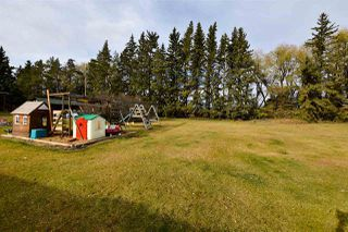 Photo 21: 55129 RGE RD 245: Rural Sturgeon County House for sale : MLS®# E4133418
