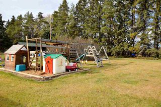 Photo 22: 55129 RGE RD 245: Rural Sturgeon County House for sale : MLS®# E4133418