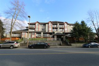 "Main Photo: 204 1215 PACIFIC Street in Coquitlam: North Coquitlam Condo for sale in ""Pacific Place"" : MLS®# R2334626"