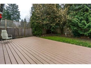 Photo 17: 3345 VERNON Terrace in Abbotsford: Abbotsford East House for sale : MLS®# R2335749