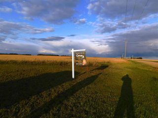 Main Photo: 562 TWP 262 RR: Rural Sturgeon County Rural Land/Vacant Lot for sale : MLS®# E4145255